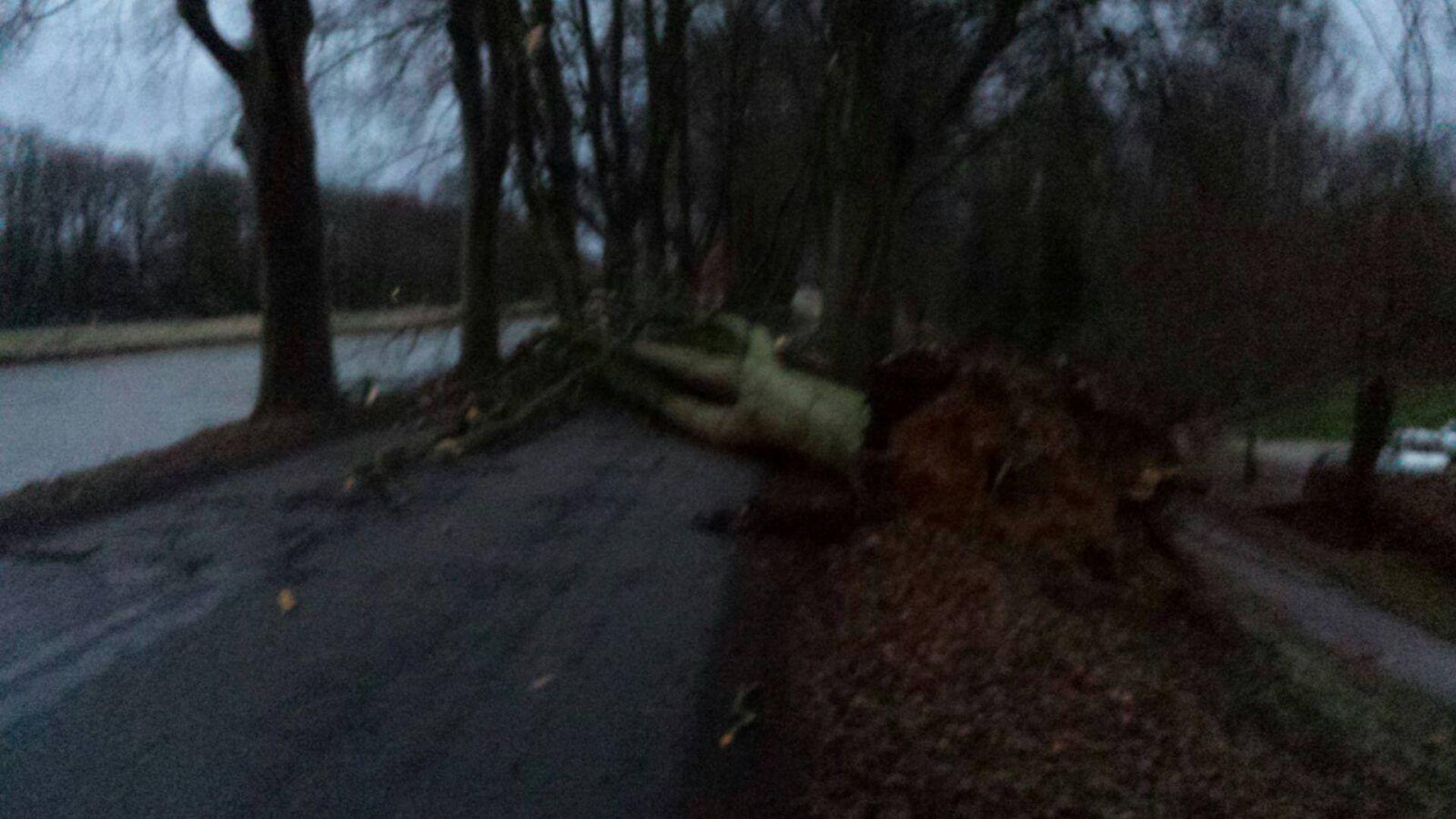Stormschade in Delden en omgeving