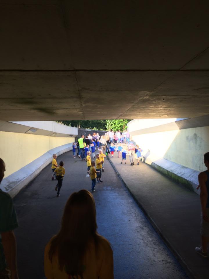 Update: Deldense Wandelvierdaagse perfect verlopen - Foto's intocht online