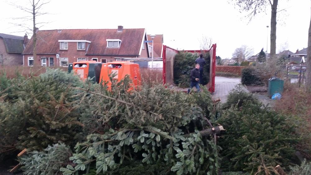 Honderden Deldense kerstbomen voor Benteloos paasvuur