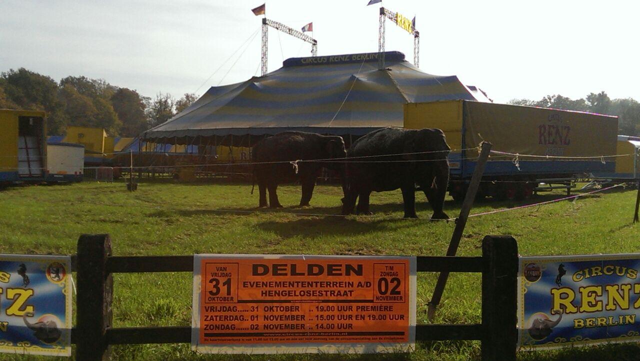 Circus Renz Berlin strijkt opnieuw neer aan Cramersweide in Delden