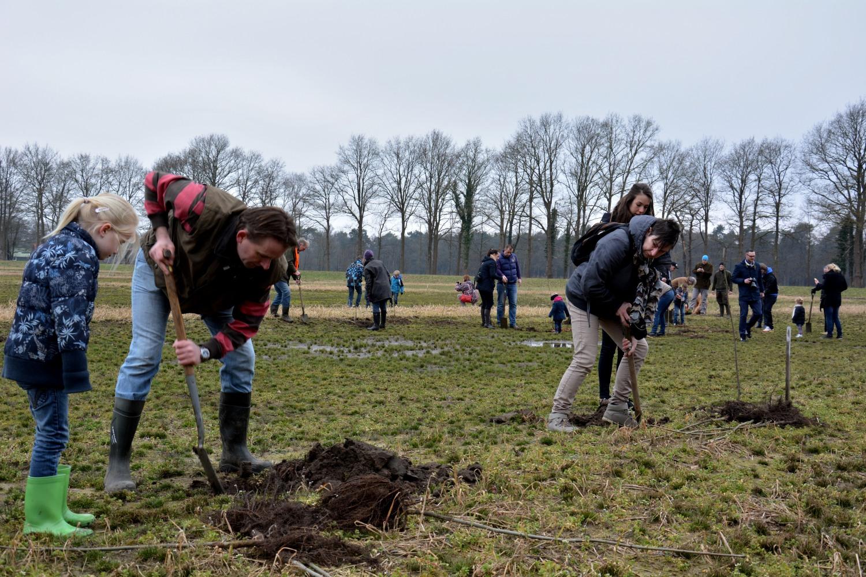 Lions Delden en de Rotary Enschede planten nieuw bos in Twickel