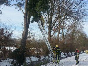 Brandweer verwijdert gevaarlijke takken in buitengebied Delden