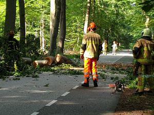 Bornsestraat in Twickel tijdelijk afgesloten door omgevallen boom