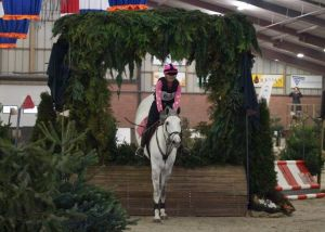 Indoor Ambt Delden 2019 bij paardensportcomplex 'De Hoffmeijer' in Ambt Delden