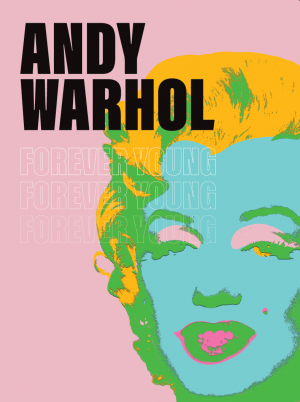 ​Andy Warhol in Museum No Hero in Delden