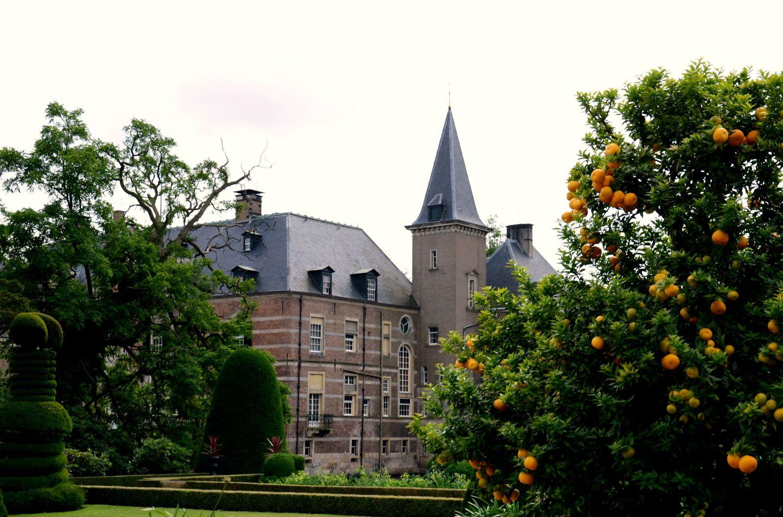 Zomer foto van de week - zomers plaatje bij kasteel Twickel